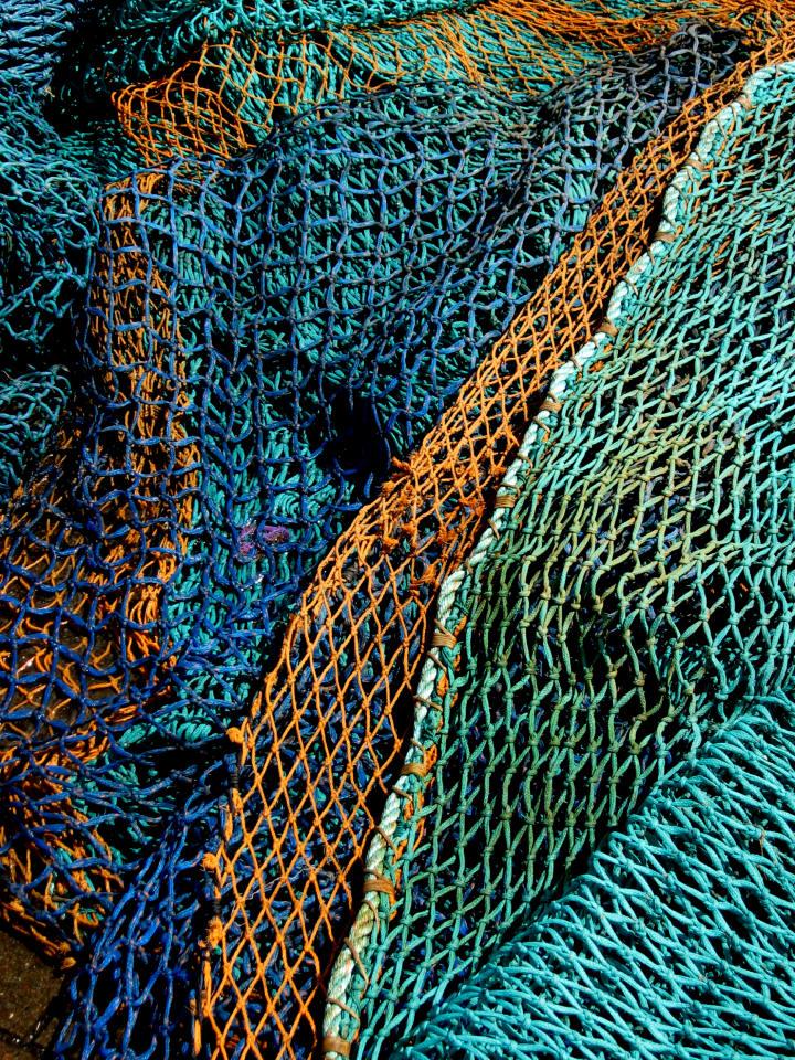 Caroline peacock photography for Fish net company